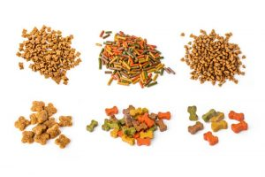 What Are The Best Brands of Dog Food?