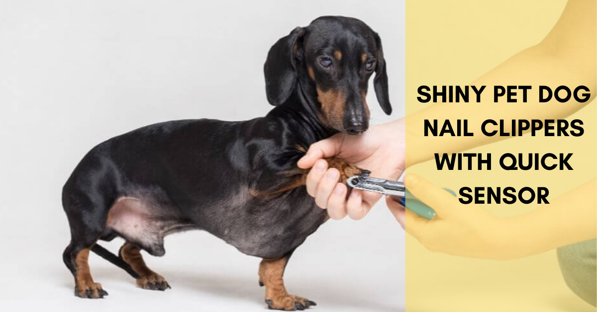 SHINY PET Dog Nail Clippers with Quick Sensor