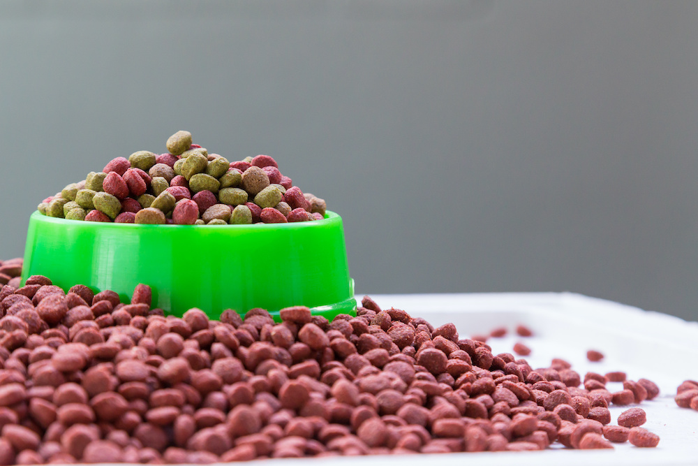 what is hydrolyzed protein dog food